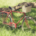 3D模拟自行车越野